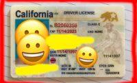 idgod california fake id